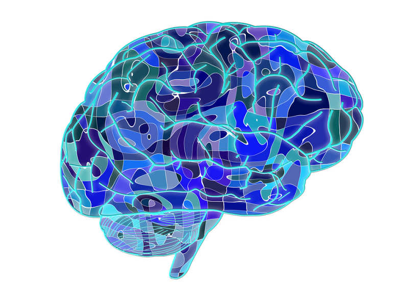 Is the brain like a computer, descriptive and scientific?